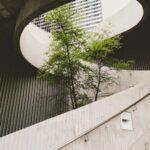 tendencias sostenibilidad empresas